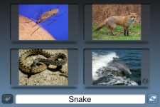 NounStar Learn English - Free screenshot 1/5