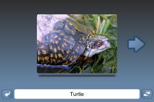 NounStar Learn English - Free screenshot 3/5