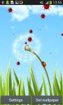 Dandelion Live Wallpapers screenshot 2/6