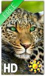 Leopard Live Wallpaper HD screenshot 1/2