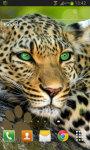 Leopard Live Wallpaper HD screenshot 2/2