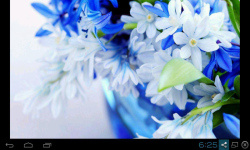 Beautiful Flowers Wallpaper Free screenshot 1/5