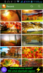 Autumn HD Wallpaper screenshot 1/3