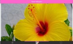 Flower 3D Wallpapers screenshot 1/6