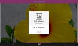 Flower 3D Wallpapers screenshot 3/6