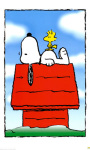 Snoopy Wallpapers Android Apps screenshot 3/6