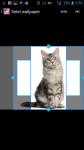 Photo Of Cats screenshot 3/4