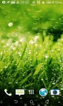 Grass 3D Live Wallpapers screenshot 2/4