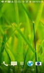 Grass 3D Live Wallpapers screenshot 3/4