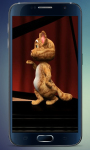 Cat Tom Dance Screan screenshot 1/5