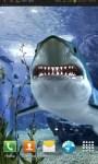 Touch the Shark Live Wallpaper free screenshot 2/3