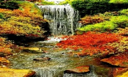 Waterfall In Flower Live Wallpaper screenshot 2/3