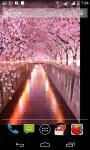 Sakura LiveWallpaper screenshot 3/4