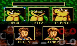 Battle Toads and Double Dragon Premium screenshot 5/5