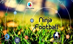 The Ninja Football screenshot 1/1