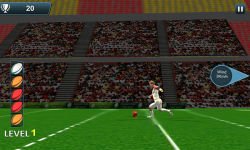 Rugby Flick Kick Shoot 3D screenshot 4/6