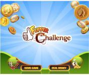 Flipper Challenge screenshot 1/1