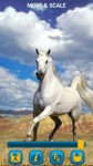 Horses Wallpapers by Nisavac Wallpapers screenshot 3/5