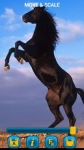Horses Wallpapers by Nisavac Wallpapers screenshot 4/5