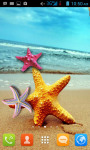 Seashell and Starfish Live Wallpaper Free screenshot 1/4