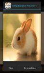 Cute Animals Slide Puzzle screenshot 3/5