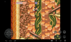 Mickey Mouse abd Donald Duck on World of Illusion screenshot 4/4