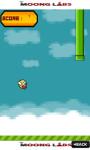 Flappy Bird Flight - Free screenshot 3/4