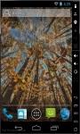 Trees To The Sky Live Wallpaper screenshot 2/2