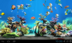 Koi Fish Live Wallpaper Free screenshot 4/4