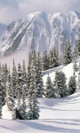 Winter Landscapes Wallpapers screenshot 2/6