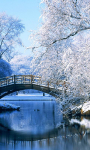 Winter Landscapes Wallpapers screenshot 3/6