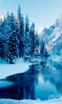 Winter Landscapes Wallpapers screenshot 4/6