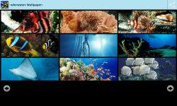 Magical Underwater Wallpapers screenshot 2/6