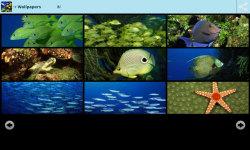 Magical Underwater Wallpapers screenshot 3/6