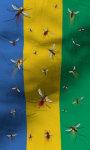 Gabon flag live wallpaper Free screenshot 2/5