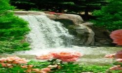 Park Waterfall Live Wallpaper screenshot 2/3