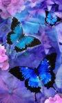 Butterflies Shine Live Wallpaper screenshot 1/3