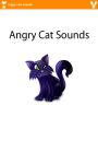 Angry Cat Sounds screenshot 1/3