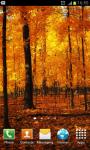 HD Autumn Wallpapers screenshot 5/6