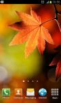 HD Autumn Wallpapers screenshot 6/6