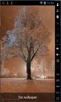 Wonderful Snow Live Wallpaper screenshot 1/2