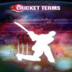 Cricket Terms Lite screenshot 1/2
