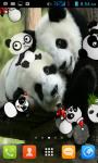 Panda Live Wallpaper Best screenshot 1/4