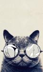 Cute Cat Live Wallpaper 2 screenshot 1/3