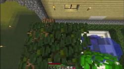 Perfect Minecraft Building entire spectrum screenshot 6/6