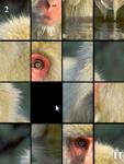 Animals Funitto screenshot 3/4