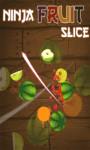 Ninja Fruit Slice – Free screenshot 1/5