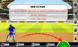 Cricket 2014 Game screenshot 1/2
