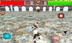Kungfu Warriors 3D Free screenshot 2/5