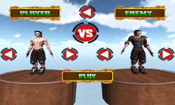 Kungfu Warriors 3D Free screenshot 3/5